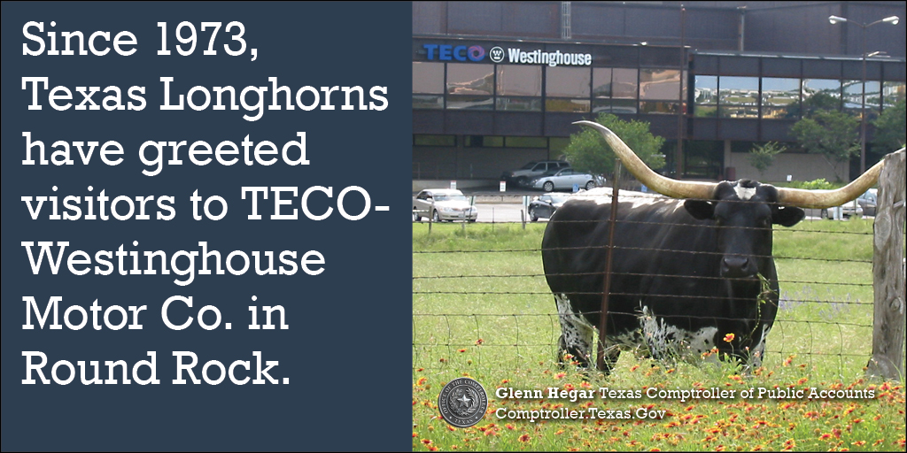Since 1973, Texas longhorns have greeted visitors to TECO-Westinghouse Motor Co. in Round Rock.