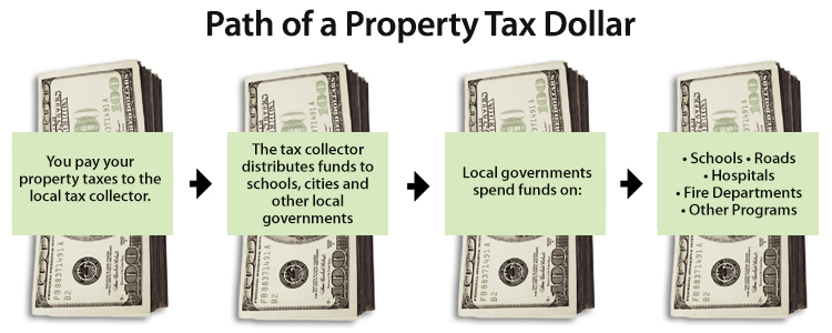 Path of Property Tax Dollar