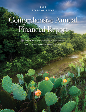 State of Texas Annual Comprehensive Financial Report (ACFR)