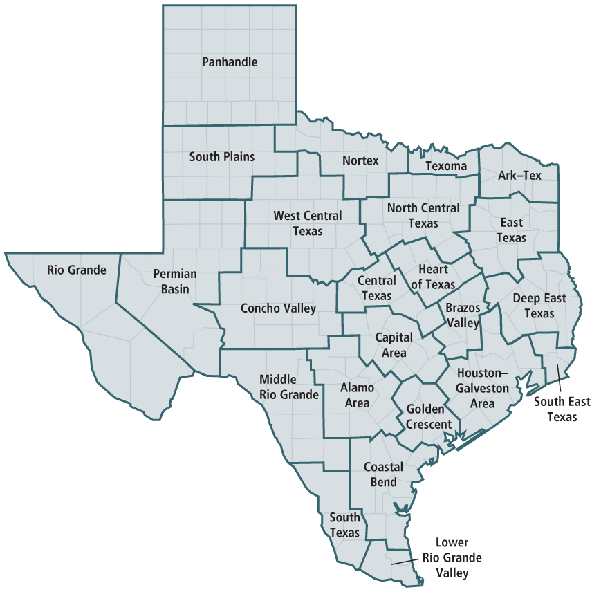 texas state expenditures by council of government region