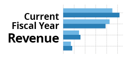 View Current Fiscal Year Revenue